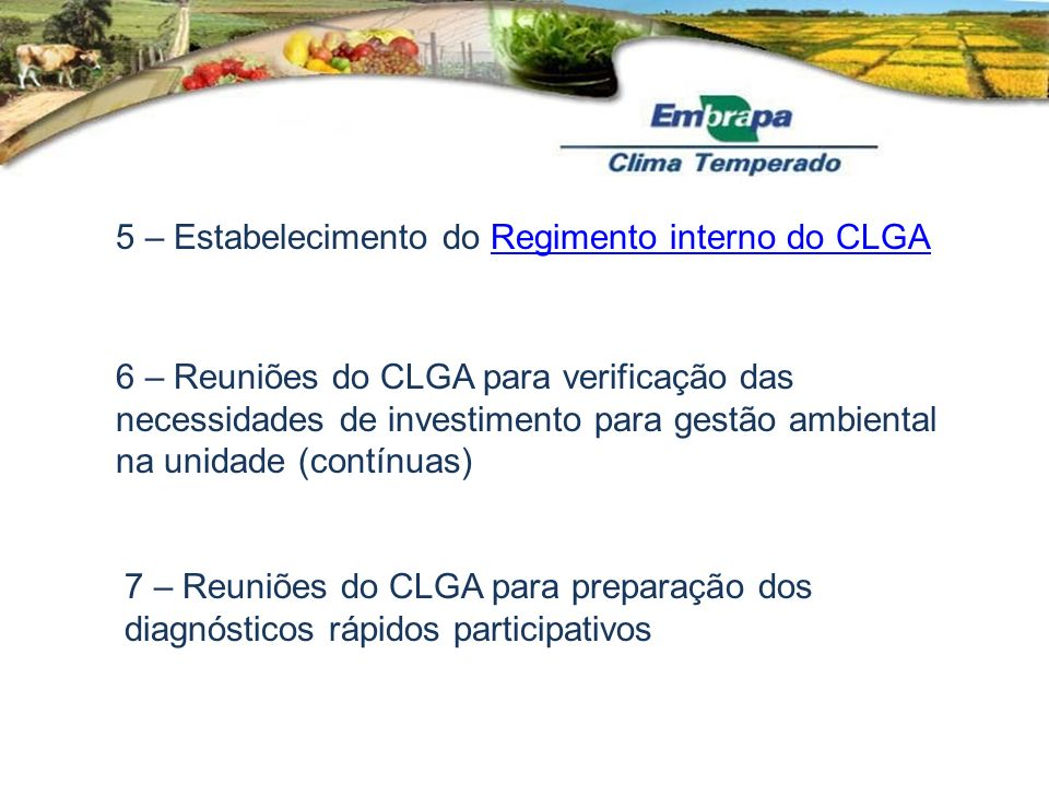 5 – Estabelecimento do Regimento interno do CLGA