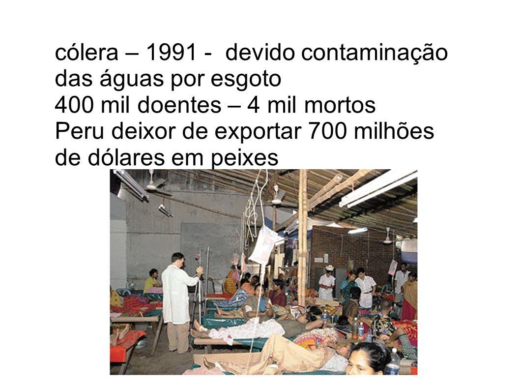 cólera – 1991 - devido contaminação das águas por esgoto