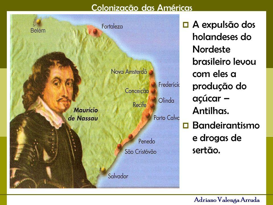 A expulsão dos holandeses do Nordeste brasileiro levou com eles a produção do açúcar – Antilhas.