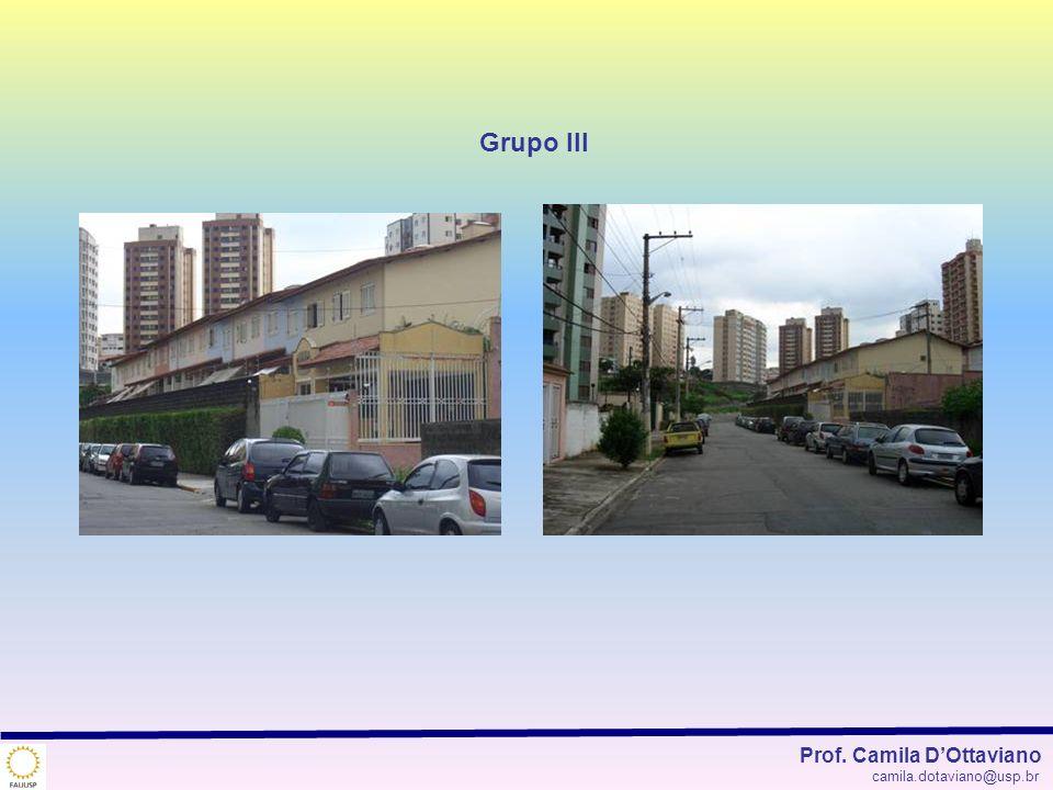 Grupo III Prof. Camila D'Ottaviano camila.dotaviano@usp.br