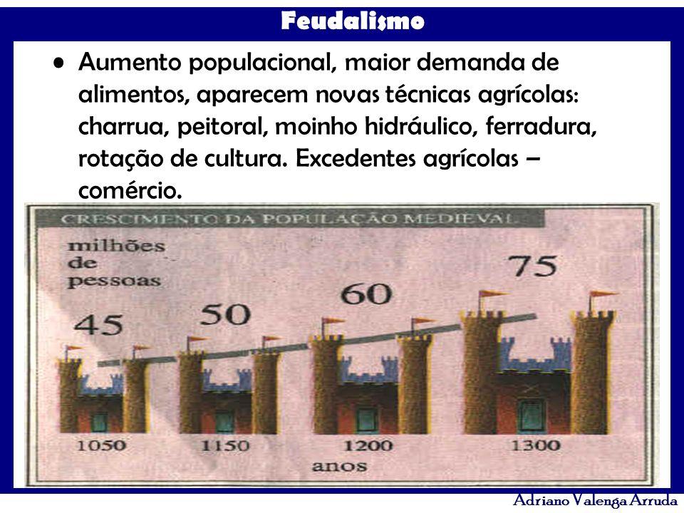 Aumento populacional, maior demanda de alimentos, aparecem novas técnicas agrícolas: charrua, peitoral, moinho hidráulico, ferradura, rotação de cultura.