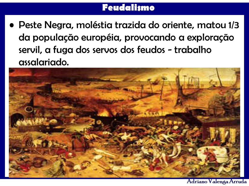 Peste Negra, moléstia trazida do oriente, matou 1/3 da população européia, provocando a exploração servil, a fuga dos servos dos feudos - trabalho assalariado.