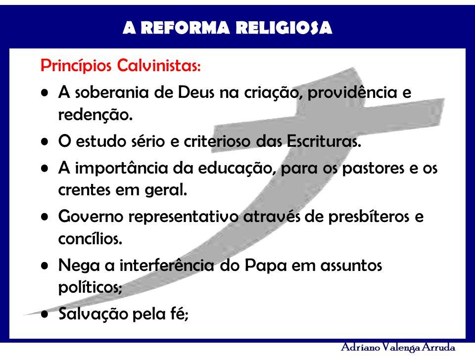 Princípios Calvinistas: