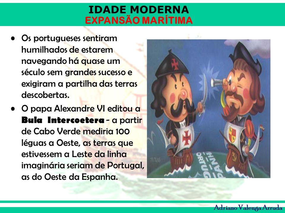 Os portugueses sentiram humilhados de estarem navegando há quase um século sem grandes sucesso e exigiram a partilha das terras descobertas.