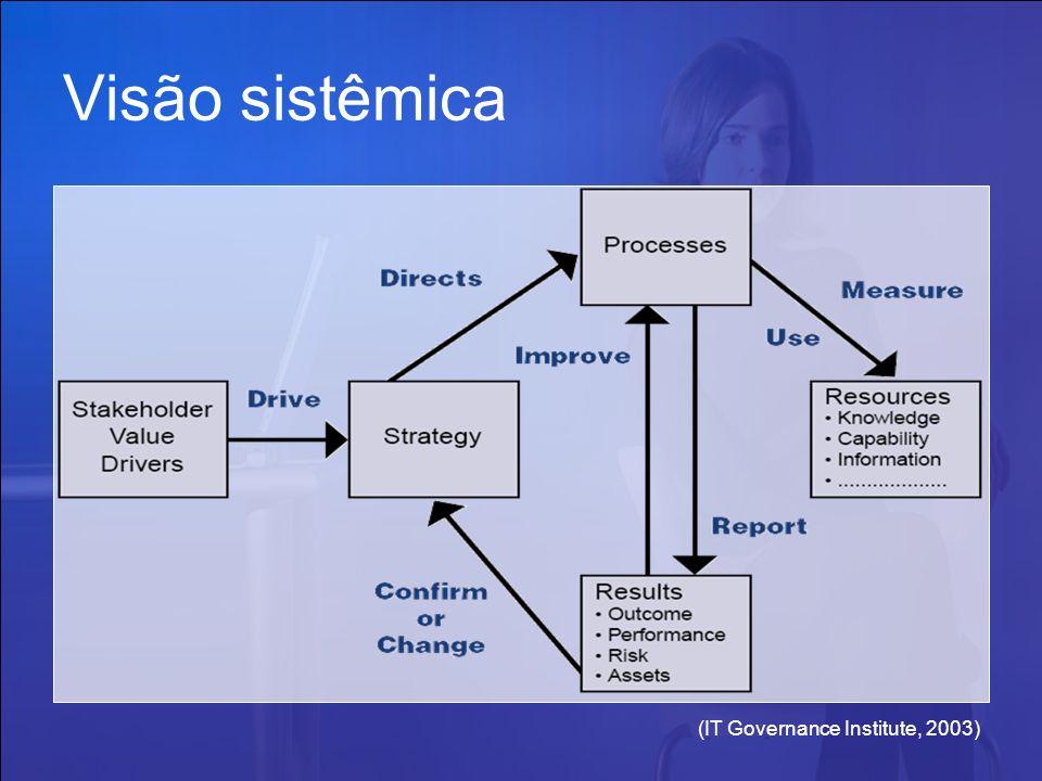 Visão sistêmica (IT Governance Institute, 2003)