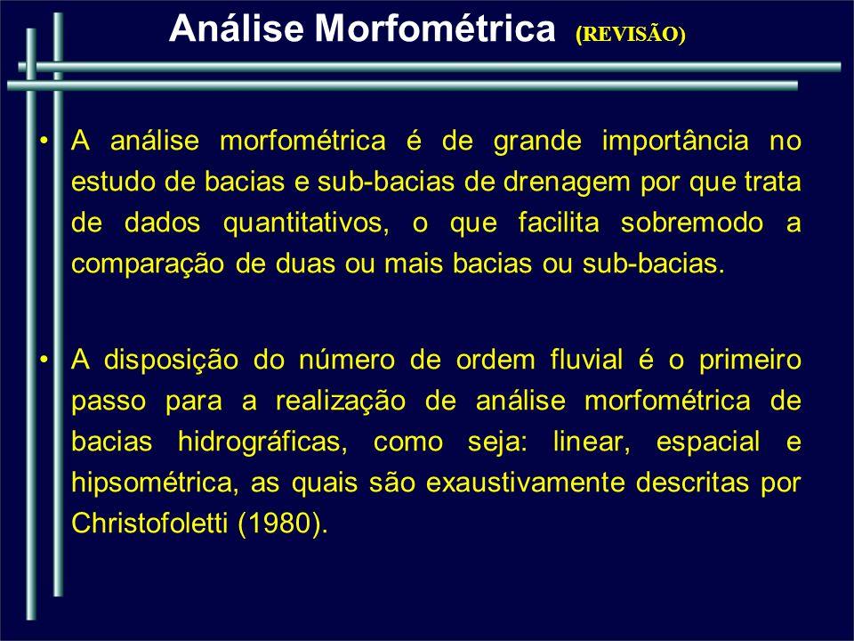 Análise Morfométrica (REVISÃO)