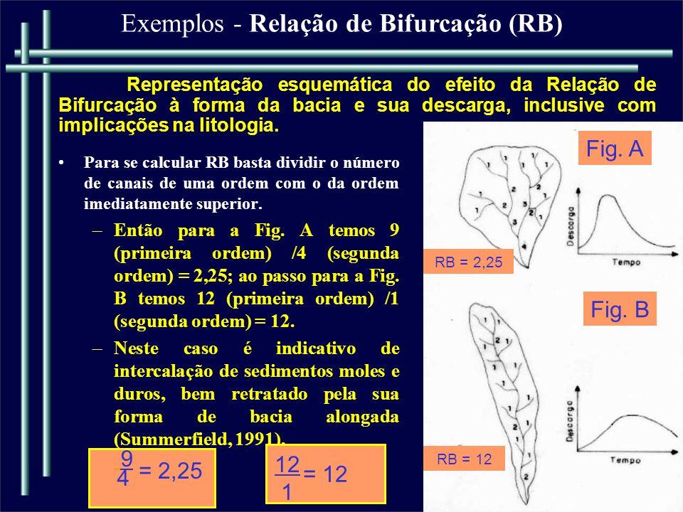 Exemplos - Relação de Bifurcação (RB)