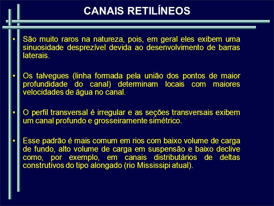 CANAIS RETILÍNEOS São muito raros na natureza, pois, em geral eles exibem uma sinuosidade desprezível devida ao desenvolvimento de barras laterais.