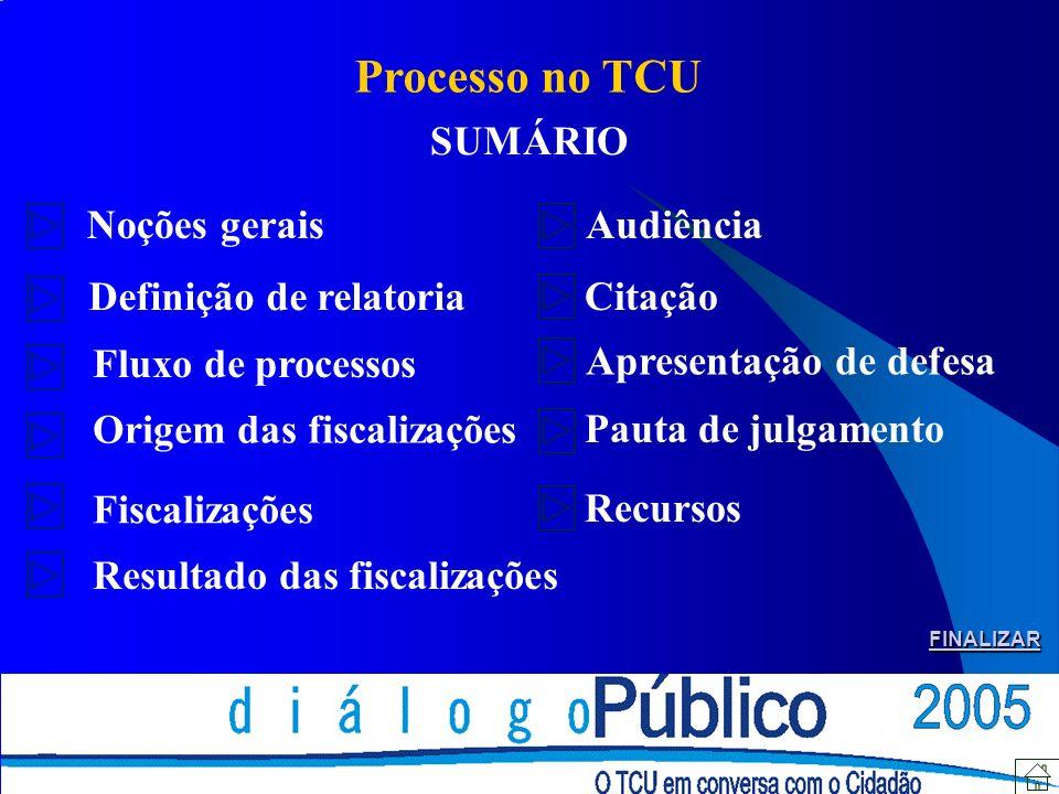 Processo no TCU SUMÁRIO Noções gerais Audiência Definição de relatoria