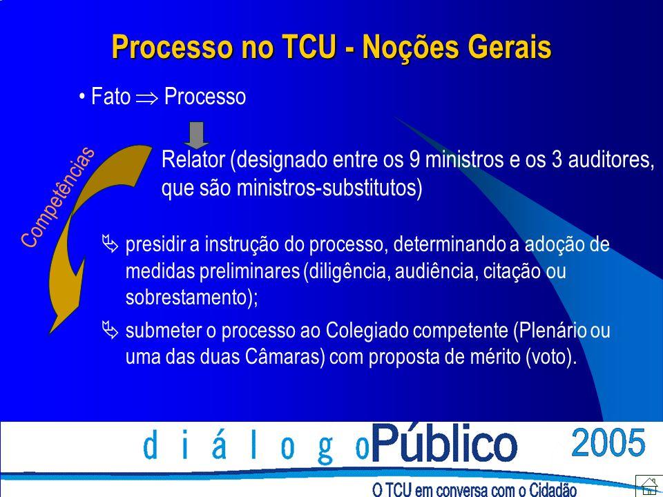 Processo no TCU - Noções Gerais