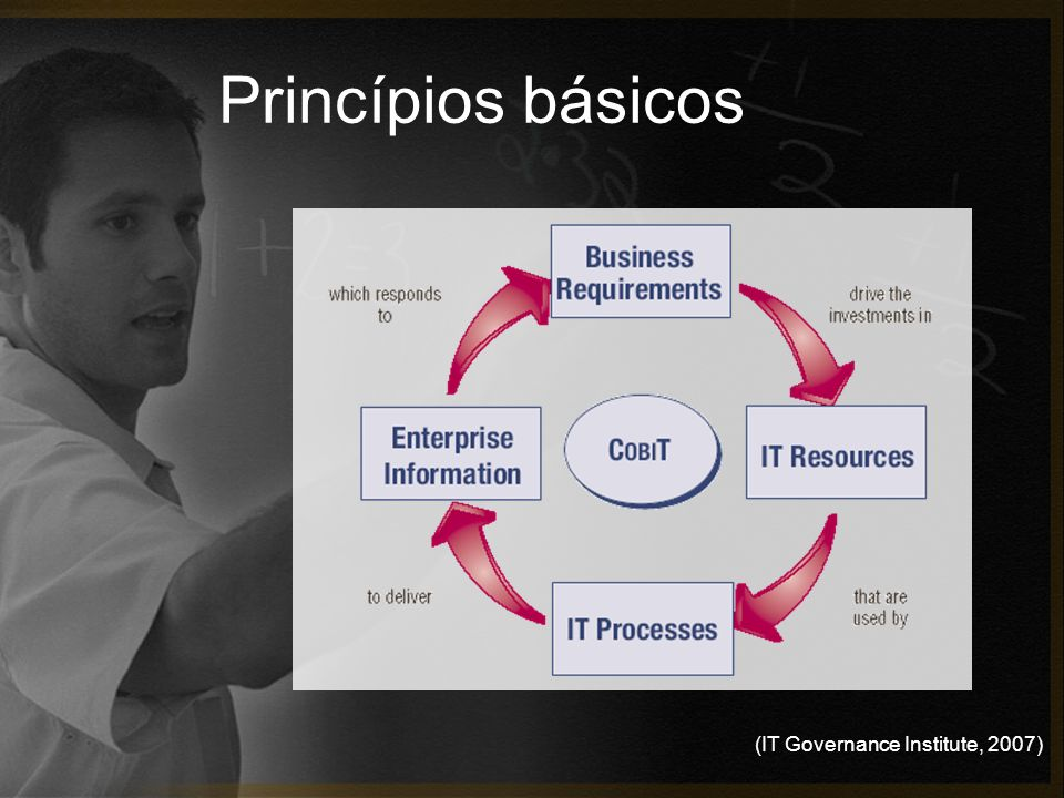 Princípios básicos (IT Governance Institute, 2007)