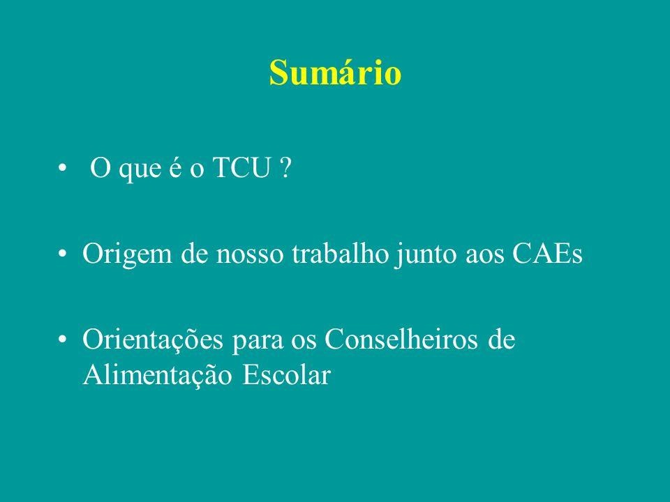 Sumário O que é o TCU Origem de nosso trabalho junto aos CAEs