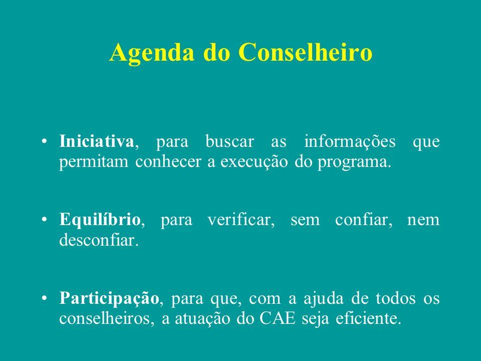 Agenda do Conselheiro Iniciativa, para buscar as informações que permitam conhecer a execução do programa.
