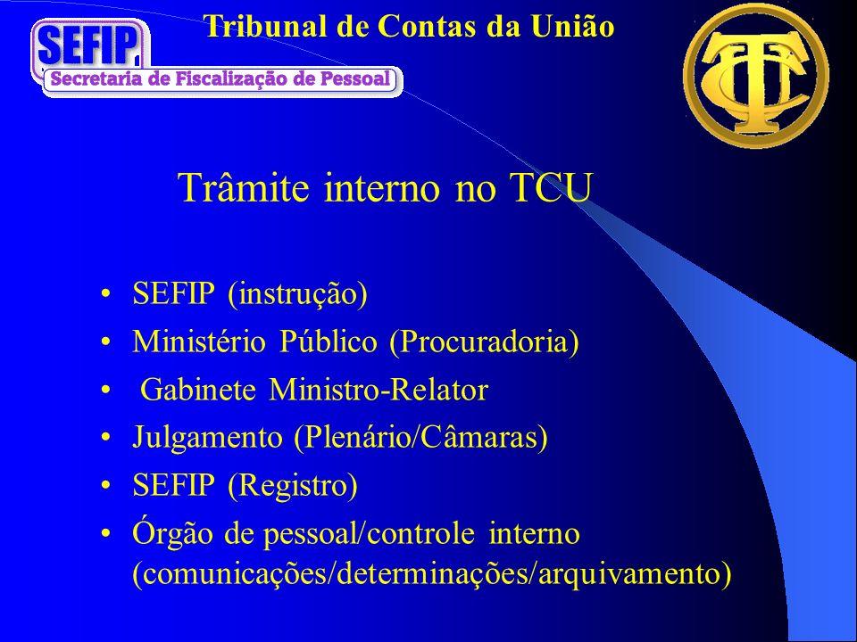 Trâmite interno no TCU SEFIP (instrução)