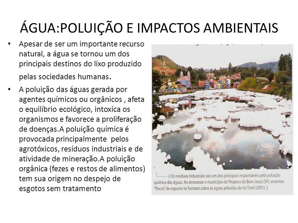 ÁGUA:POLUIÇÃO E IMPACTOS AMBIENTAIS