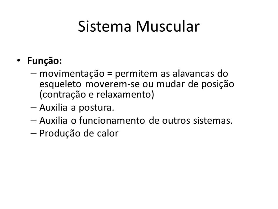 Sistema Muscular Função: