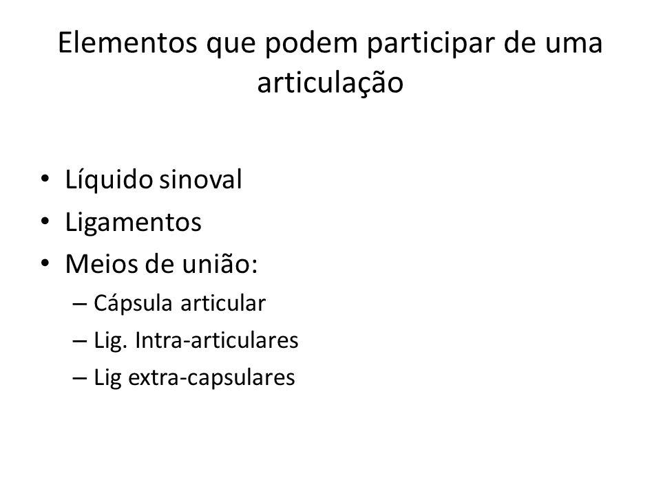 Elementos que podem participar de uma articulação