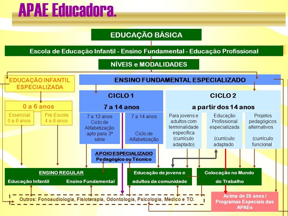 APAE Educadora. EDUCAÇÃO BÁSICA