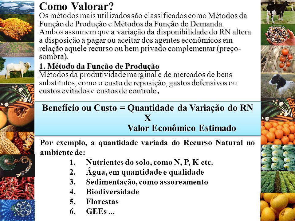 Como Valorar Benefício ou Custo = Quantidade da Variação do RN X