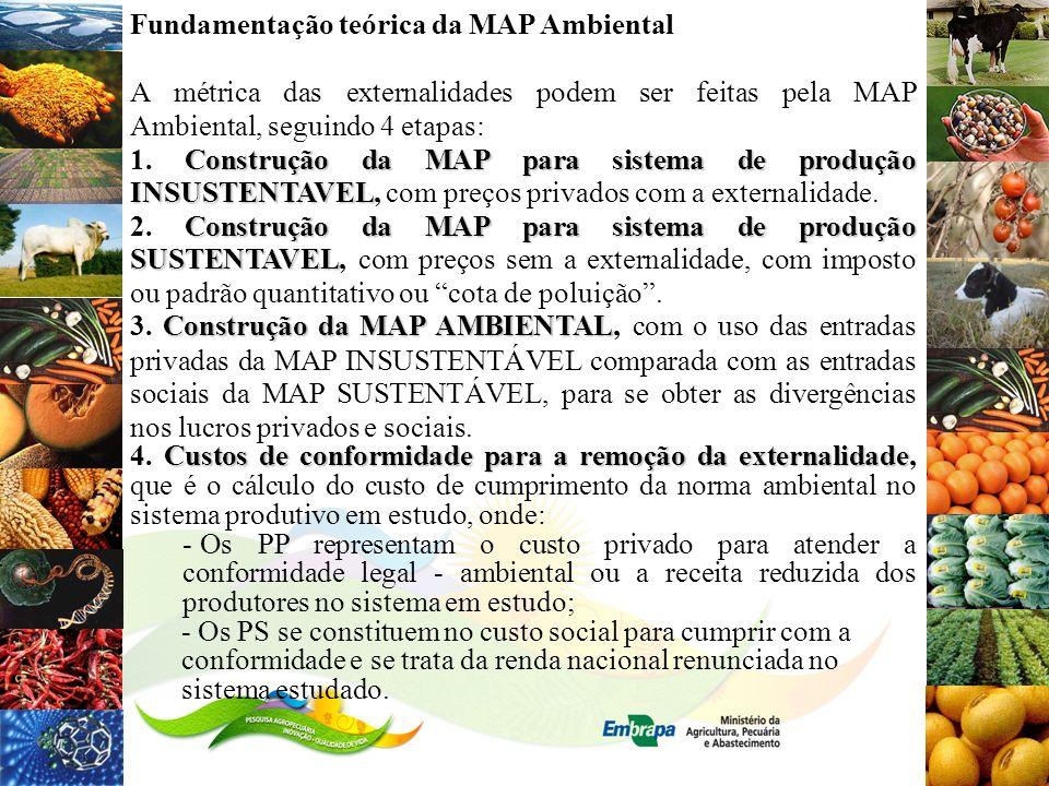 Fundamentação teórica da MAP Ambiental