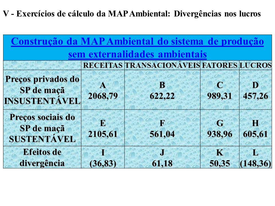 V - Exercícios de cálculo da MAP Ambiental: Divergências nos lucros