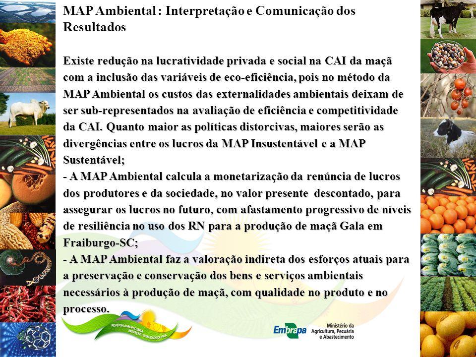 MAP Ambiental : Interpretação e Comunicação dos Resultados