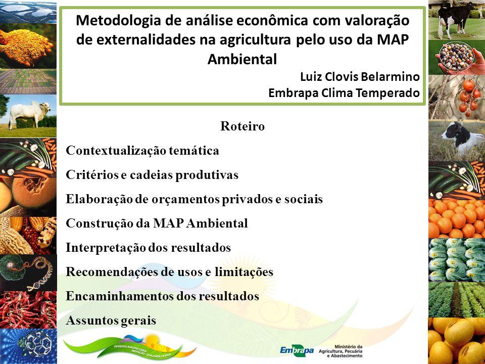 Metodologia de análise econômica com valoração de externalidades na agricultura pelo uso da MAP Ambiental