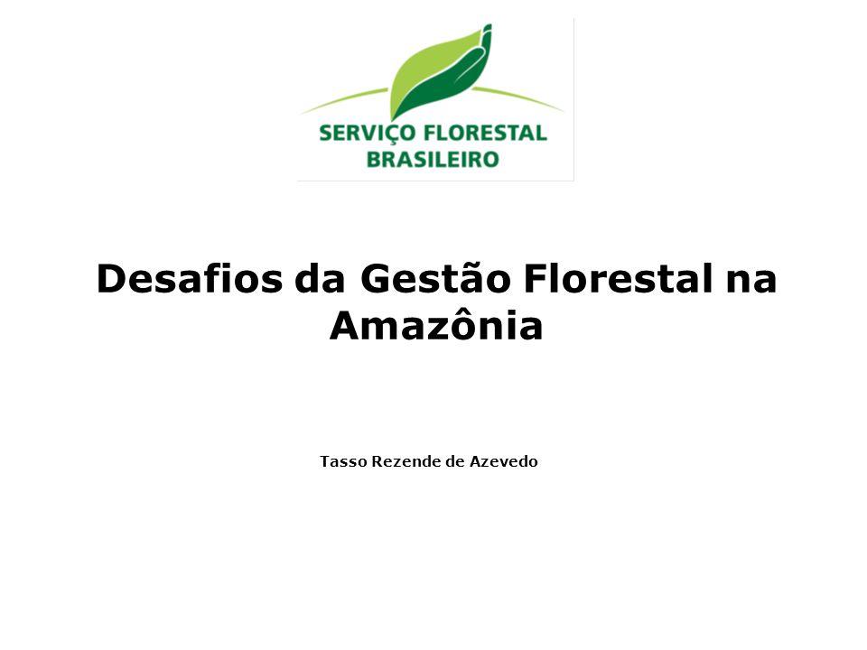 Desafios da Gestão Florestal na Amazônia