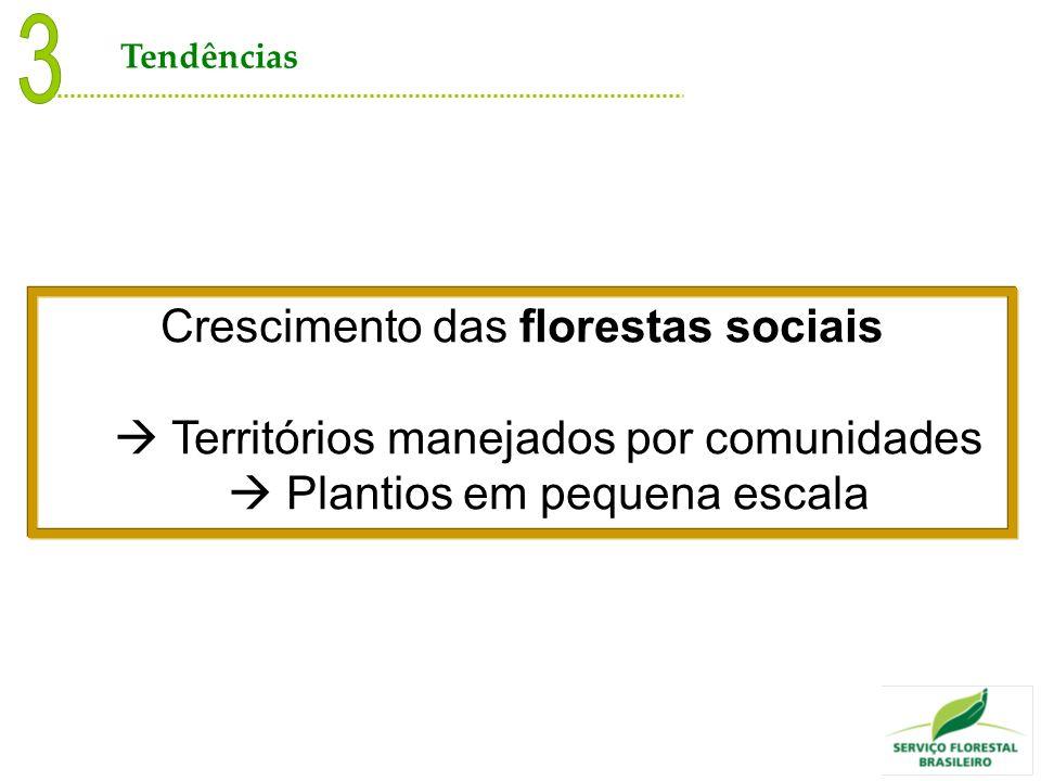 3 Crescimento das florestas sociais