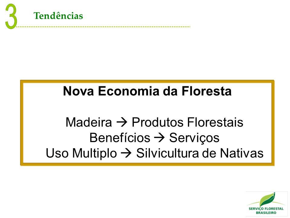 Nova Economia da Floresta