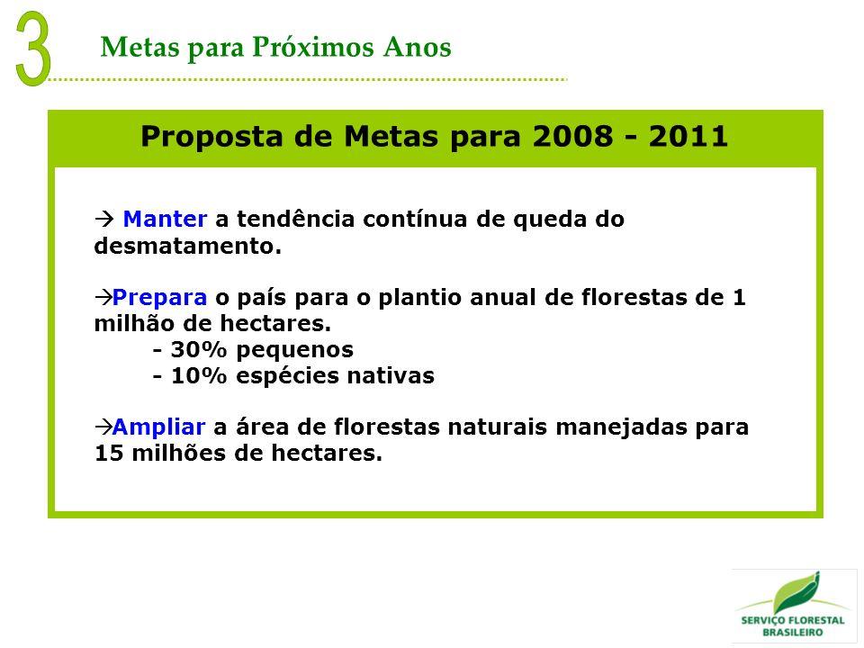 Proposta de Metas para 2008 - 2011
