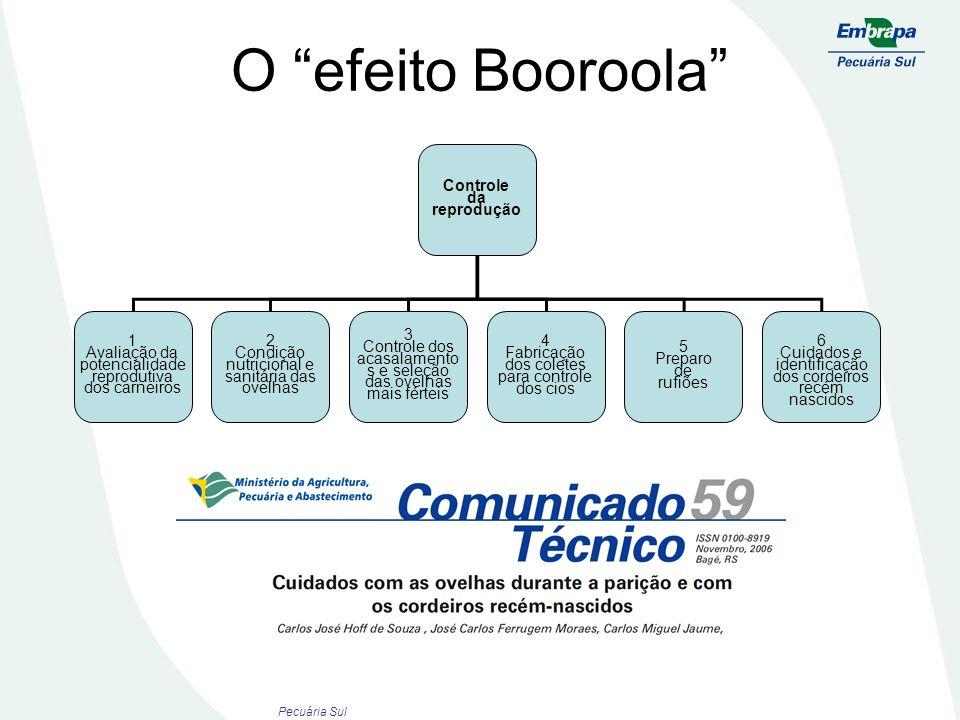 O efeito Booroola Controle da reprodução 1