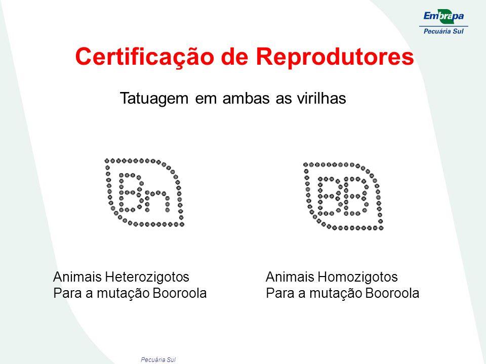 Certificação de Reprodutores