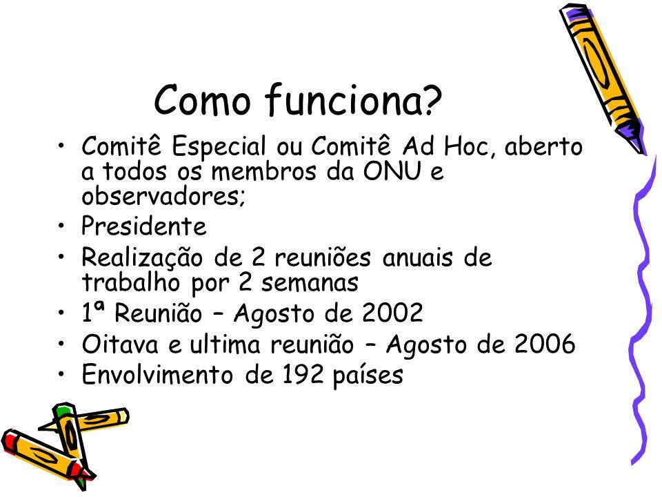 Como funciona Comitê Especial ou Comitê Ad Hoc, aberto a todos os membros da ONU e observadores; Presidente.