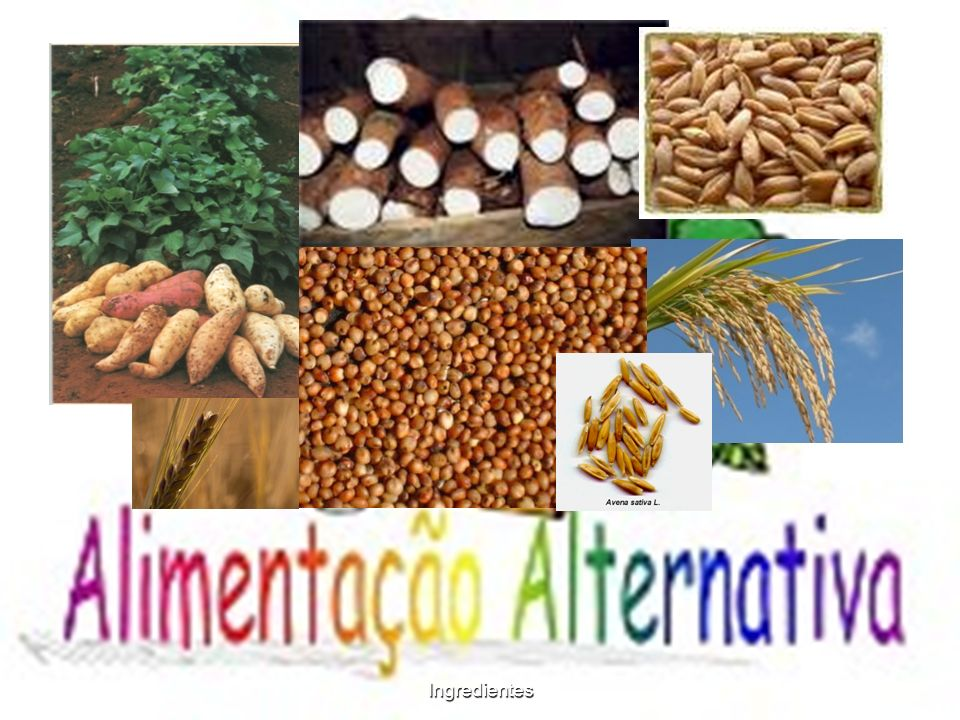 Ingredientes BATATA-DOCE