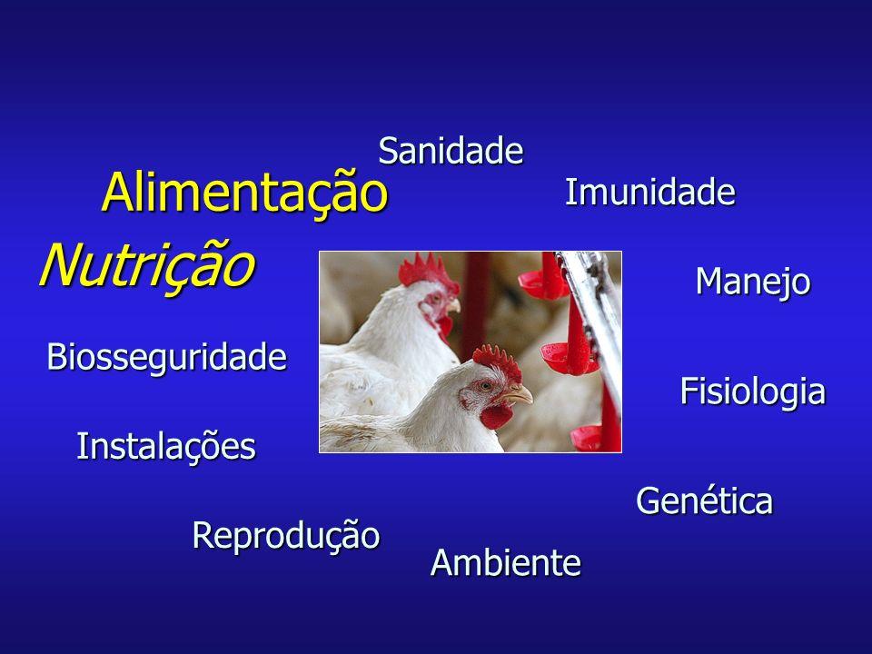Nutrição Alimentação Sanidade Imunidade Manejo Biosseguridade
