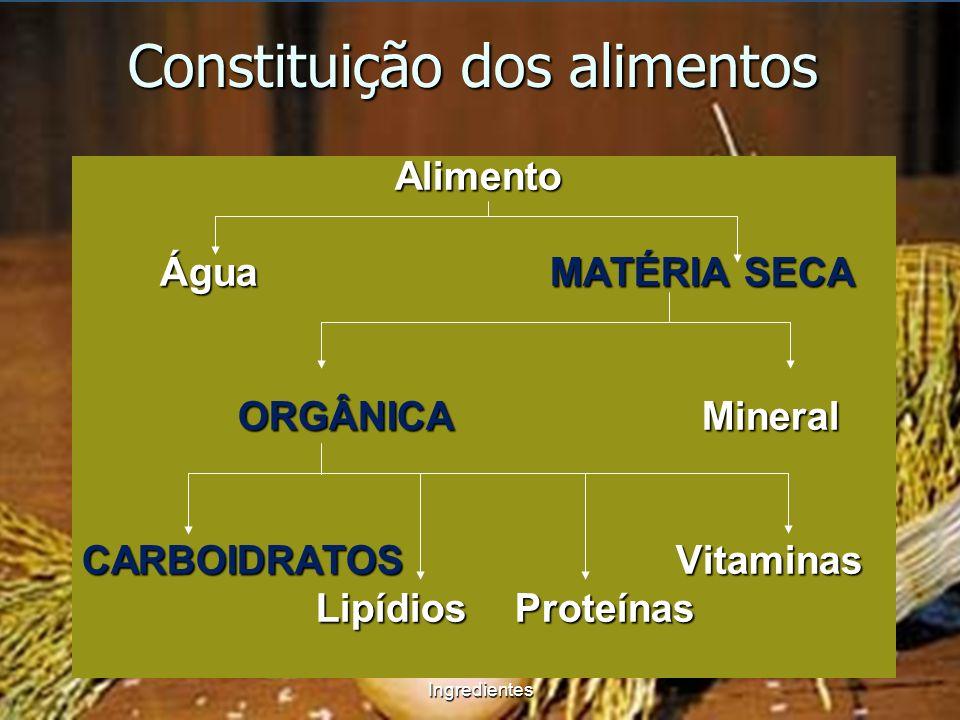 Constituição dos alimentos