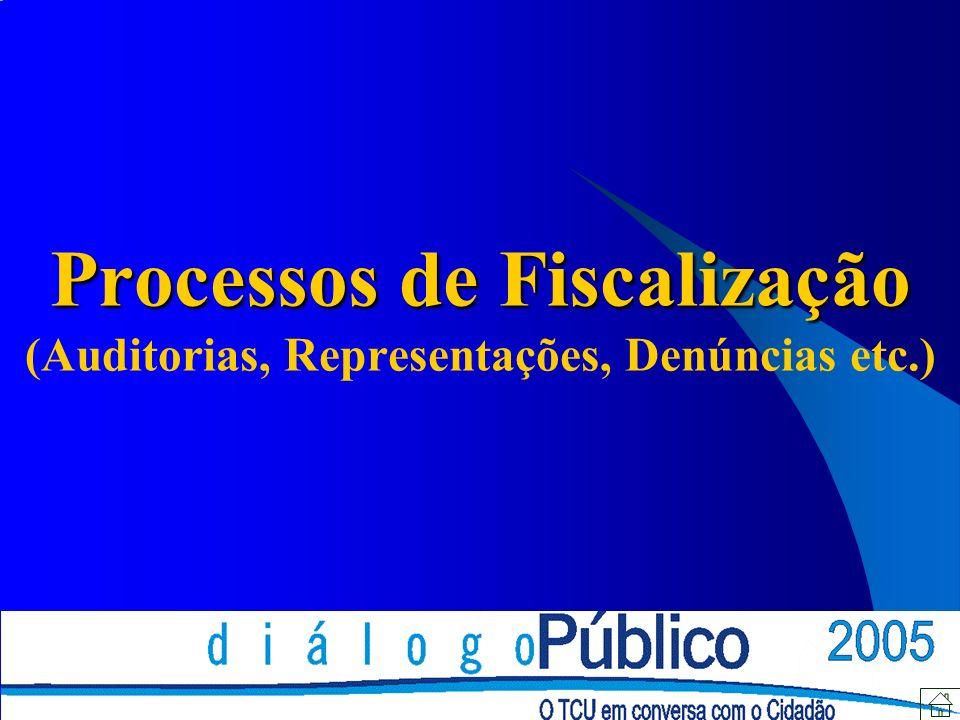 Processos de Fiscalização (Auditorias, Representações, Denúncias etc.)