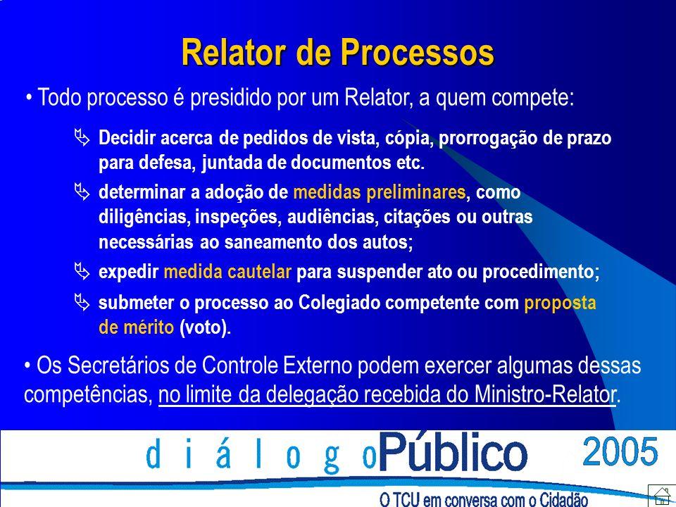 Relator de Processos Todo processo é presidido por um Relator, a quem compete: