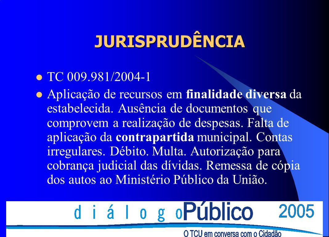 JURISPRUDÊNCIA TC 009.981/2004-1.