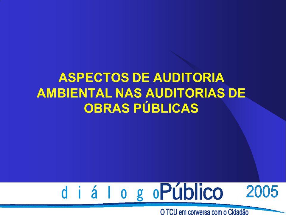 ASPECTOS DE AUDITORIA AMBIENTAL NAS AUDITORIAS DE OBRAS PÚBLICAS