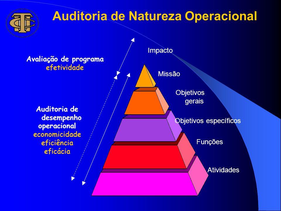 Auditoria de Natureza Operacional Auditoria de desempenho