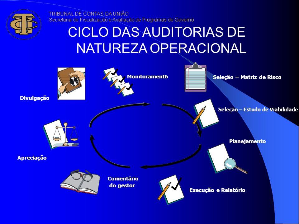 CICLO DAS AUDITORIAS DE NATUREZA OPERACIONAL