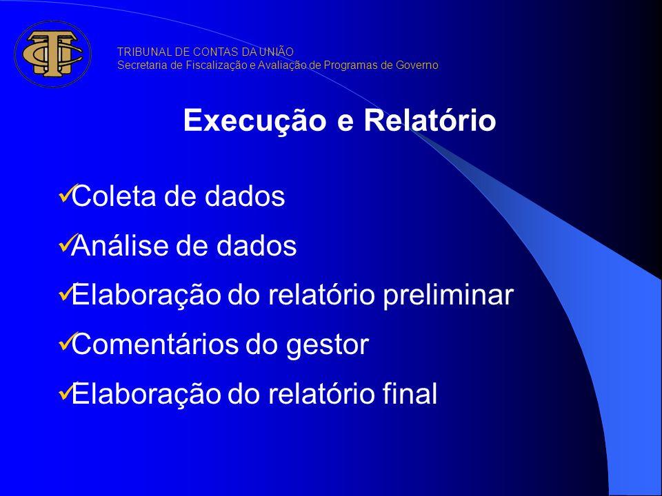 Execução e Relatório Coleta de dados Análise de dados