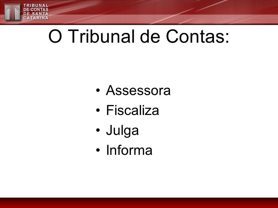 O Tribunal de Contas: Assessora Fiscaliza Julga Informa