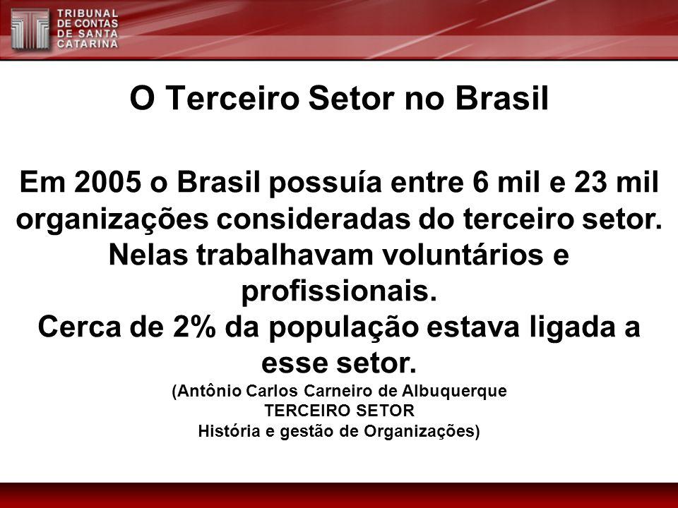 O Terceiro Setor no Brasil