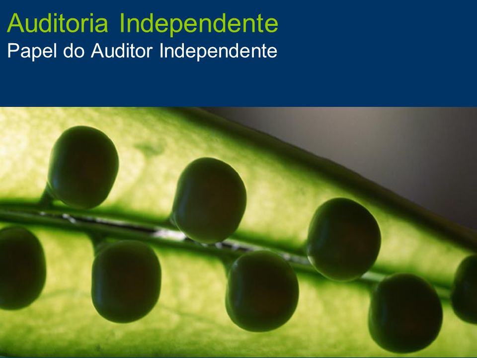 Auditoria Independente Papel do Auditor Independente