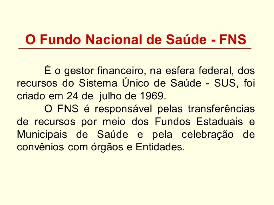 O Fundo Nacional de Saúde - FNS