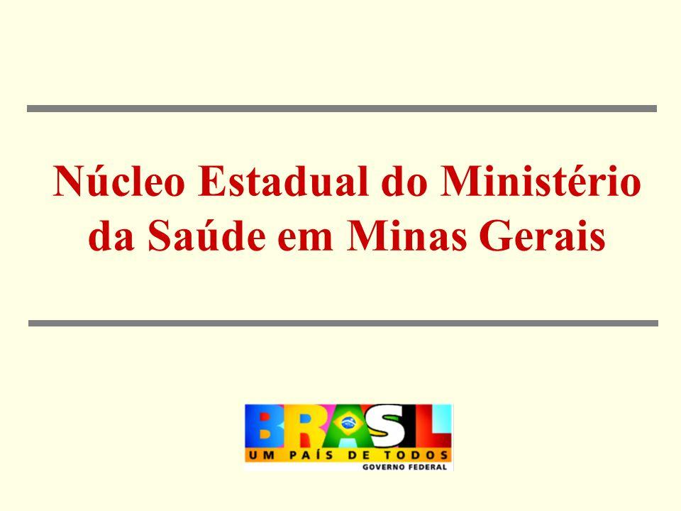 Núcleo Estadual do Ministério da Saúde em Minas Gerais