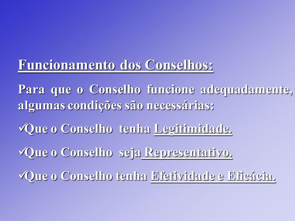 Funcionamento dos Conselhos: